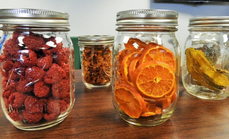 dehydrate your own fruit