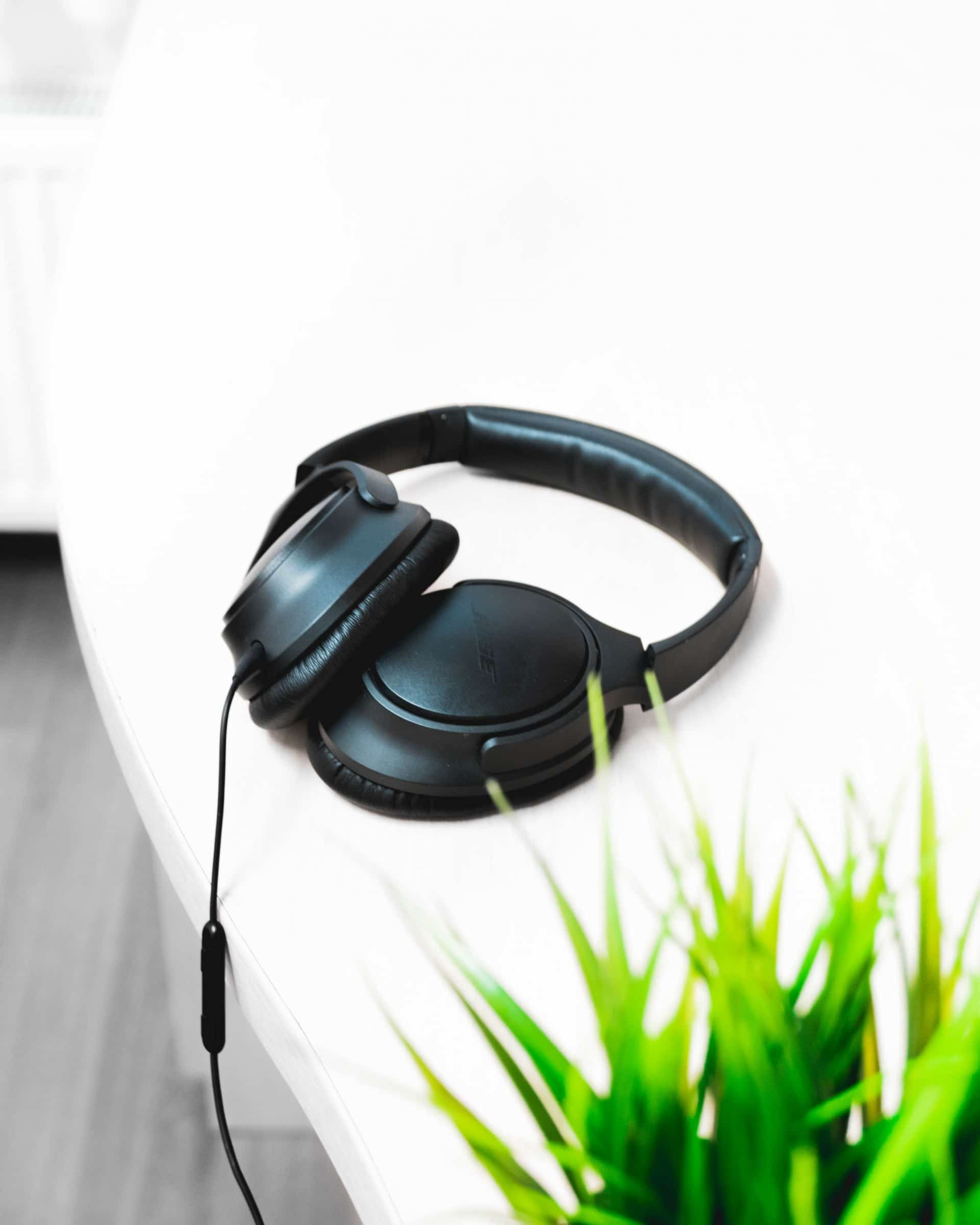 Hearing Protection Loss Lawn Mowing Ear Ears