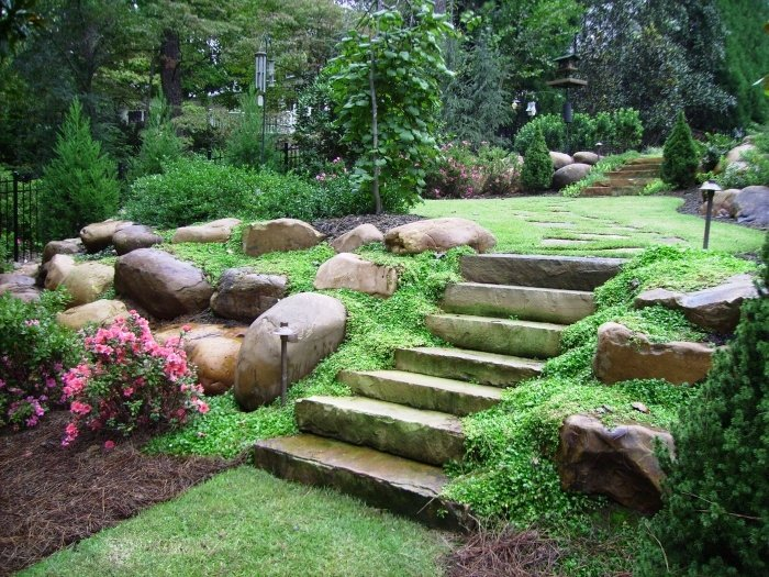 Landscaping The Backyard rock landscaping ideas to make your yard look unique