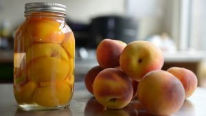 canning peaches, how to can peaches, canned peaches recipe, canning peaches in water, syrup for canning peaches, light syrup for canning peaches, ball canning peaches, how do you can peaches, canning fresh peaches, how to can fresh peaches, jarred peaches, water bath canning peaches, pressure canning peaches, brine for canning peaches, how to can peaches without a canner, canning peaches with honey, light syrup for canning, ball canning fresh peaches, hot water bath canning peaches, water bath peaches, how long to process canned peaches, peach canning process, cold pack canning peaches, how to can peaches light syrup, home canned peaches, how many pounds of peaches do you need for canning, how to process peaches, paleo canning recipes, canning peaches no sugar, canning peaches without sugar, canning peaches with skins, canning peaches lemon juice, water bath canning pears