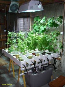 grow tent lighting