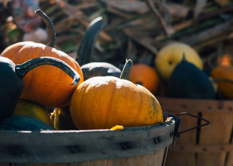 fall porch decor, fall decorations for outside, fall porch decor, fall porch decorating ideas, fall decorating ideas for outside, front porch fall decor, front porch fall decorating ideas, fall front porch ideas, fall porch, porch decor