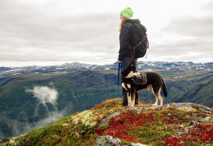 hike with your dog