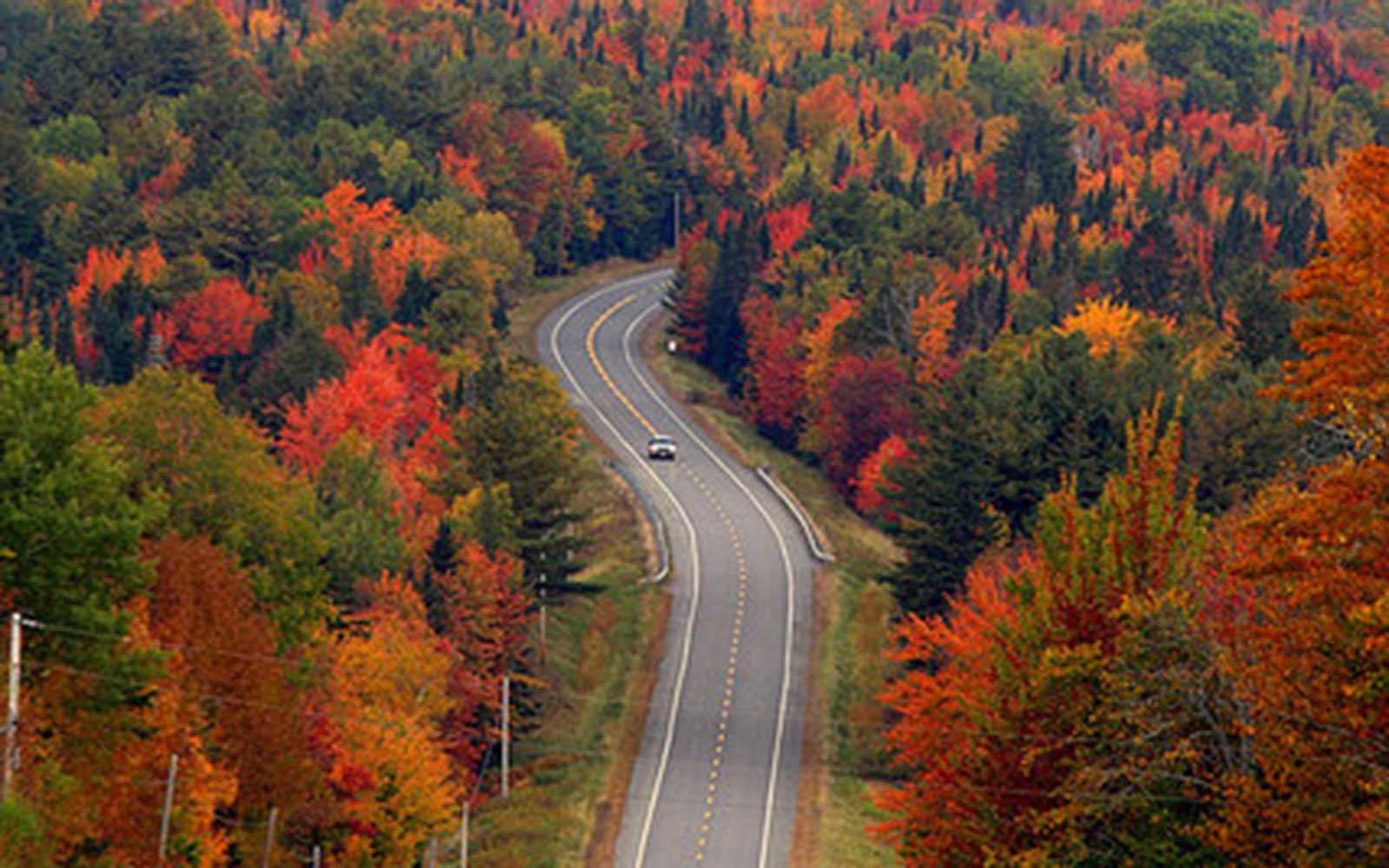 best places to see fall foliage, best fall colors in usa, fall scenery, best fall foliage, best places to see fall colors in usa, best places for fall foliage, best fall colors, best fall foliage in usa, best place for fall colors, best places to see leaves change, places to see fall foliage, best place to see fall colors, best autumn colors in usa, best place to enjoy fall colors in us, best fall leaf viewing, where to go to see fall colors, fall leave, best places to see fall foliage in usa, best places to see fall foliage in the us, best places to view fall foliage, best fall season in usa, pretty fall colors, pretty fall leaves, best cities to see fall foliage, best autumn leaves, best autumn colors, best foliage in us, where is the best fall foliage, where to see fall colors, beautiful fall scenery, most beautiful fall leaves, fall colors usa, best foliage in usa, best fall foliage trips usa, fall sightseeing, fall places near me, fall scenery near me, best fall colors in us, places to go in autumn, places to visit for fall colors, beautiful autumn colors, fall leaves trip, pretty fall, beautiful autumn leaves, best fall colors in east coast, places to see fall colors near me, best states to see fall colors, autumn in usa, good fall colors, best place to see fall leaves, best places to see autumn leaves, fall foliage end of september, where to go for fall colors, where to see fall foliage, best foliage, september fall leaves, beautiful fall colors, fall foliage vacations, places to see fall colors, best places to visit for fall foliage, november foliage, most beautiful fall trees, in the leaves, famous fall pictures, best states for fall foliage, best fall foliage vacations, pretty fall scenery, best fall leaves, best place for fall colors in usa, best fall foliage in east coast usa, best places in the world to see fall foliage, september fall colors, best cities for fall foliage, eastern us fall colors, best places in the us for fall foliage, beautiful fall trees, prettiest states in the fall, pictures of fall trees, october scenery pictures, best place to live for fall weather, best autumn trees, people in the fall, places to visit in fall in usa, autumn trees, east coast autumn, best time to see leaves change, fall foliage early november, november fall images, fall leaves scenery, pretty autumn leaves, november fall foliage, colorful fall foliage, best place to see leaves changing color, bright fall pictures, autumn leaves scenery, beautiful fall foliage, autumn leaves east coast, beautiful fall leaves, fall autumn colors, fall tree colors 2017 , beautiful fall, fall foliage images, most beautiful fall foliage in the world, beautiful foliage, what are fall colors, places to see, best fall colors in the world, fall pictures, fall images, fall backgrounds, fall photos, fall pic, fall wallpaper, fall scenes, beautiful fall pictures, autumn pictures, cute fall pictures, fall pictures wallpaper, autumn images, fall images free, free fall pictures, pretty fall pictures, pictures of fall leaves, fall pictures for desktop, fall desktop backgrounds, beautiful fall images, fall pics wallpaper, fall season pictures, fall scenery pictures, autumn photos, fall season images, fall scenes images, fall background images, autumn pics, fall themed pictures, beautiful fall photos, autumn desktop wallpaper free, pretty fall backgrounds, fall nature pictures, free fall photos,     beautiful pictures of autumn season, fall stock photos, autumn pictures wallpaper, fall time pictures, fall scenes wallpaper, free fall backgrounds, happy fall images, fall photographs, fall images free wallpaper, printable fall scenes, fall scenery images, fall landscape photos free, pics of fall leaves, fall nature wallpaper, free fall wallpaper, fall photography, fall background pictures, welcome fall images, high resolution fall images, pics of fall scenes, fall photos for desktop background, free fall scenery pictures, late fall backgrounds, autumn pictures for wallpaper, autumn scene, fall trees images, free autumn images, fall pictures for wallpaper free, free fall pics, fall season pictures photos, fall scene pictures, fall roads pictures, fall tree pictures free, google images fall scenes, fall leaves desktop wallpaper free, free pictures of autumn scenes, fall tree background images, free fall photography, fall winter images, fall themed photos, fall trees background wallpaper, free fall photos wallpaper, fall pics 2017, free pictures of fall scenery, fall themed wallpaper, beautiful autumn pictures, autumn images free, pictures of fall and winter, fall wallpaper images, fall colors wallpaper, fall day pictures, fall landscape pictures, autumn nature pictures, fall backgrounds for pictures, free fall pictures to copy, fall trees wallpaper, free images of fall, fall season photos, autumn background images, fall hd photos, fall autumn pictures free, pretty autumn pictures, free fall desktop wallpaper, fall desktop, autumn desktop background, fall drive, fall road trips midwest, best fall drives, scenic road trips midwest, midwest scenery, fall foliage drives in ohio, wisconsin fall drives, best fall foliage drives in indiana, apostle islands fall colors