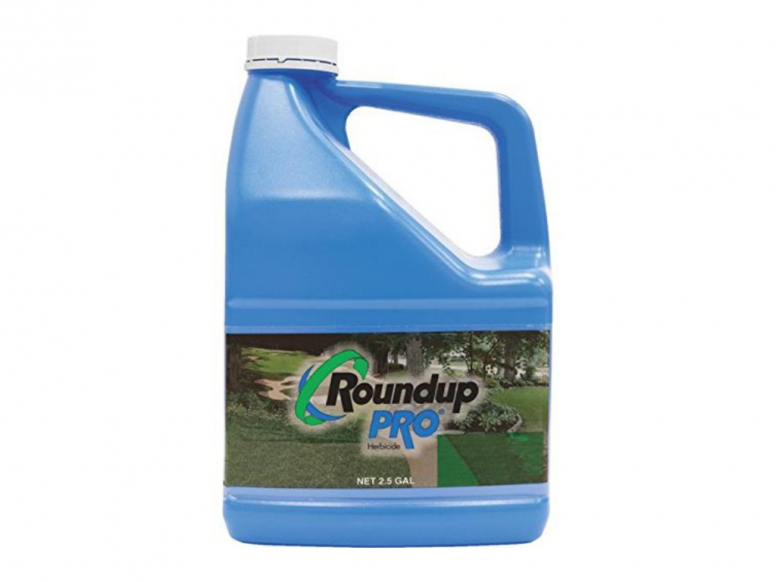 roundup pro, roundup pro concentrate, roundup label, roundup commercial, roundup pro label, roundup pro max, roundup pro concentrate ratio, roundup herbicide label, how to mix roundup pro, roundup concentrate, roundup glyphosate label, roundup mix ratio, roundup pro concentrate mix ratio, roundup professional, roundup pro herbicide label, commercial roundup herbicide, monsanto roundup pro, roundup mix, how to mix roundup, roundup pro mixing instructions, roundup pro concentrate herbicide msds, roundup directions, roundup label directions, roundup herbicide concentrate, roundup mixing instructions, roundup pro concentrate 2.5 gallon, roundup mix rate, roundup label rates, roundup pro concentrate herbicide 2.5 gallon 524 529, roundup mixture, roundup pro concentrate label, roundup pro herbicide, roundup pro mix ratio, roundup pro concentrate mixing instructions, commercial grade roundup, roundup concentrate directions, roundup pro concentrate msds, roundup product label, herbicide concentrate, roundup concentrate label, roundup concentrate mix ratio, roundup concentrate mix, roundup product picker, mixing roundup concentrate plus, roundup weed killer instructions mixing, roundup mixing directions, roundup herbicide label instructions, monsanto roundup mixing instructions ,roundup products information, pro monsanto, how to mix roundup concentrate plus, roundup directions for use concentrate, roundup pro 2.5 gallon, roundup pro concentrate 50.2 glyphosate, roundup label usa, roundup weed killer label, roundup products, roundup herbicide instructions, roundup weed killer concentrate mixing instructions, roundup herbicide mixing ratio, roundup mixing ratio per gallon, roundup pro msds, pro glyphosate, roundup pesticide label, how much roundup pro per gallon, industrial strength roundup, roundup mixture rate, roundup dilution rates, how to use roundup concentrate, roundup concentrate plus mixing instructions, roundup label monsanto, roundup concentrate plus instructions, roundup instructions, roundup herbicide mixing instructions, roundup concentrate dilution ratio, dilution rate for roundup concentrate, weed killer concentrate, roundup price, bulk weed killer, bulk roundup, bulk weed killer spray, roundup for sale, roundup herbicide price, roundup price per litre, industrial weed killer, roundup weed killer cheapest price, cheap weed killer concentrate, commercial grade weed killer, commercial weed killer concentrate, professional strength weed killer, commercial weed killer, professional weed killer, farm grade roundup, roundup concentrate price, roundup weed killer price, cheap round up, cheap roundup, roundup best price, bulk roundup concentrate, where to buy commercial grade weed killer, roundup for weeds only, bulk weed killer concentrate, prosecutor weed killer price, professional strength lawn weed killer, roundup weed killer price comparison, farm grade weed killer, roundup cost, lesco prosecutor for sale, professional weed killer products, industrial grade weed killer, weed killer price, roundup 2.5 gallon concentrate pro herbicide, roundup quick pro home depot, industrial strength weed killer, container round up, full strength roundup, roundup herbicide for sale, roundup msds sheet, home depot herbicide, roundup home depot, industrial weed killer for sale, where to buy roundup quick pro, glyphosate home depot, how much roundup per gallon of water, how much roundup per gallon, how much roundup per gallon for weeds, roundup per gallon, roundup concentrate per gallon, round up questions, concentrated roundup to water ratio, how much roundup concentrate per gallon, mix ratio for roundup super concentrate, roundup powermax for sale