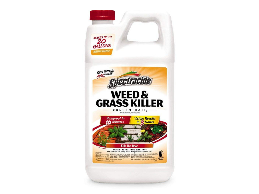 spectracide, www spectracide com, sprecticide, what is spectracide, spectracide rebate, spectracide products, spectracide tree and shrub, spectracide coupon 2017, spectracide bug and weed killer for lawns, spectracide bug and weed killer, spectracide tank sprayer, spectrum insecticide, spectracide mosquito stop machine, garden lawn products, spectracide com, home depot spectracide, spectracide mosquito stop, walmart spectracide, spectracide weed stop, weed stop for lawns, spectracide weed stop for lawns, weed stop, spectracide weed killer, spectrum weed killer, weed stop for lawns how to use, spectracide weed stop for lawns concentrate, is spectracide weed killer safe, spectracide weed killer for lawns, spectracide concentrate, spectracide weed stop for lawns directions, stump killer lowes, grass killer lowes, nutsedge killer lowes, 24d weed killer lowes, lowes weed control, lowes spectracide, lowes herbicide