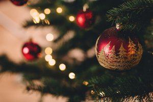 Christmas trees, pine, fir, spruce