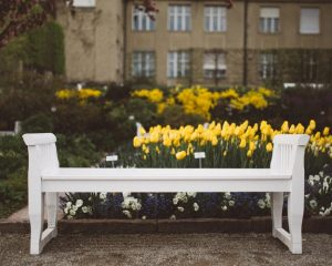 garden bench, places, spot, garden
