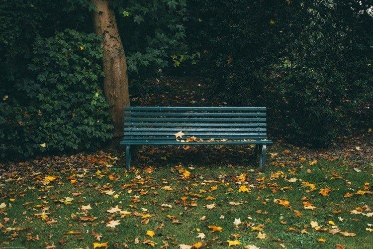 garden bench, places, spot, garden