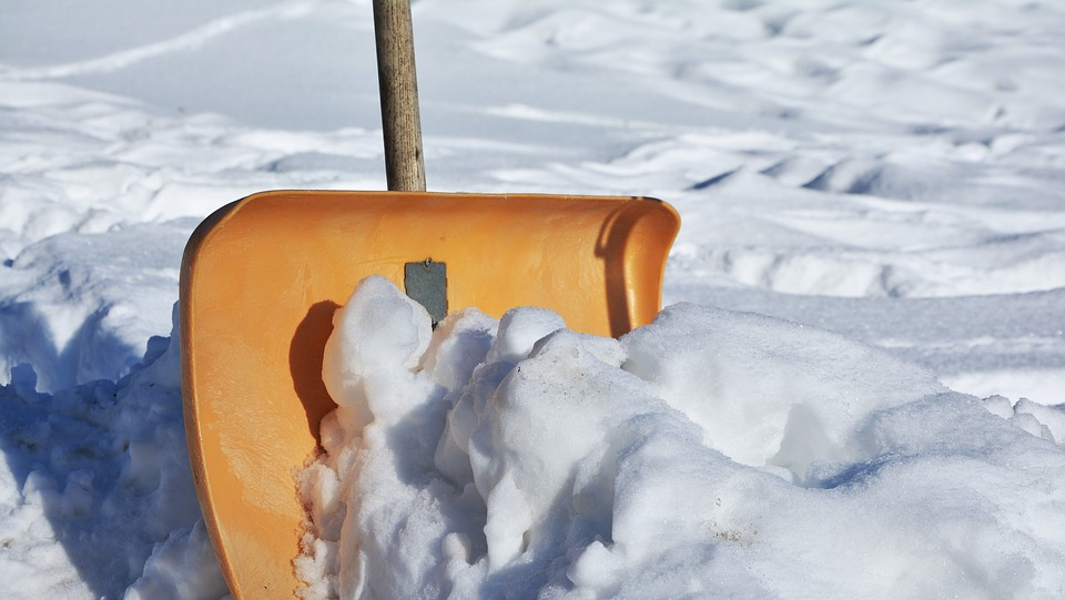 snow shovel, snow, shovel, choose