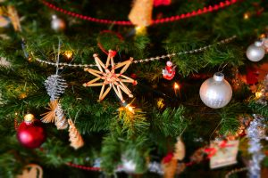 taking care of your Christmas tree, tips, how to