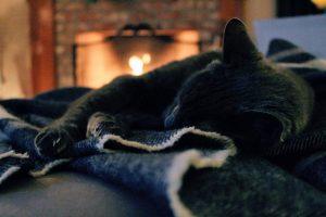 stay warm, Winter, save money