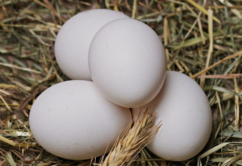 extra eggs