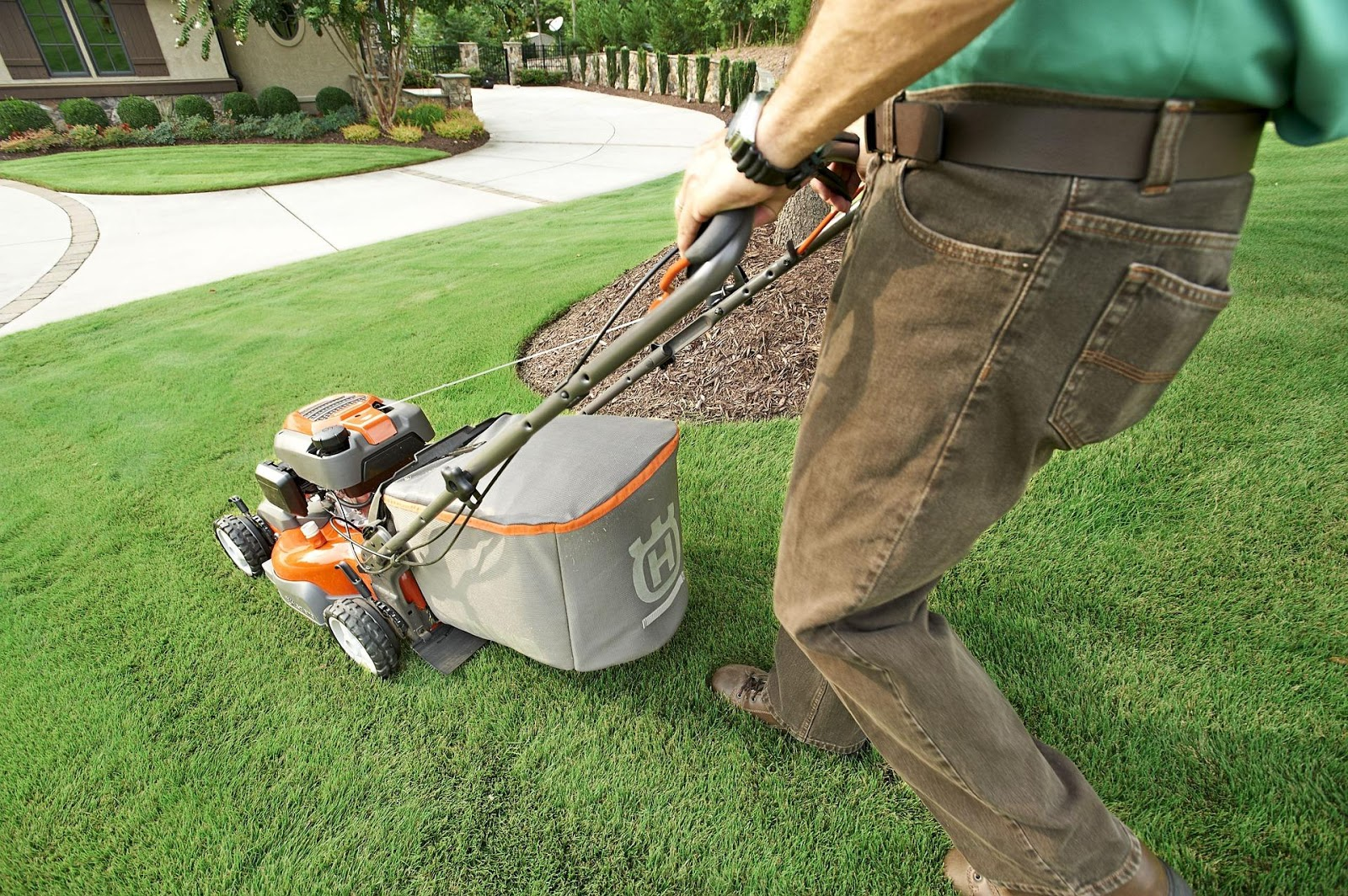lawn, lawn care, yard maintenance, tips