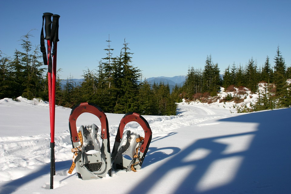 snow shoeing, snowshoe boots, how to snowshoe, what is snowshoeing, snowshoeing for beginners, what to wear snowshoeing, snowshoe hiking, how to buy snowshoes, how to choose snowshoes, how to use snowshoes, snowshoeing gear, snowshoeing basics, best snowshoes for beginners, snowshoes for sale, how much do snowshoes cost, how do you snowshoe, snowshoe walking, snowshoeing equipment, what shoes to wear with snowshoes, snowshoe rentals near me, what do you need for snowshoeing, shoes for snowshoeing, how do snowshoes work, where to buy snowshoes, used snowshoes mn, best shoes for snowshoeing, how much snow to snowshoe, snowshoeing essentials, looking for snowshoes, ebay tubbs snowshoes, best snowshoes, what to wear while snowshoeing, rei snowshoes, snowshoeing basics video, what equipment do you need for snowshoeing, snowshoeing shoes what to wear, protex snowshoes, best time to buy snowshoes, how much are snow shoes, cost of snowshoes, what is snowshoeing like, snowshoeing what to wear, best gear for snowshoeing, snowshoe information, when to use snowshoes, rent snowshoes near me, how to snowshoe for beginners, learn to snowshoe, snowshoe brands, snowshoe size chart, snowshoes wikipedia, what size snowshoes do i need, ems snowshoes, how hard is snowshoeing, rei snowshoe rental cost, fitting snowshoes, do i need snowshoes, best recreational snowshoes, how to make snowshoes in the wilderness, snowshoeing utah, snowshoe, snowshoeing