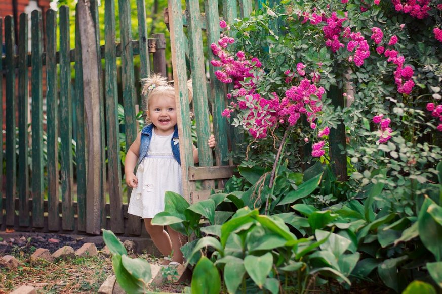 toddler in gardening, kids, garden