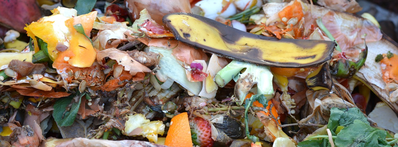 compost garbage